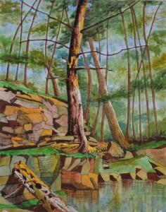 Hidden Woods - 14x11 - ink & pastel on paper (Catskills, near Onteora Lake Dec 2015)