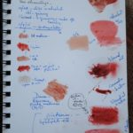 Sketchbook where I test different natural dyes. Here is it tests for Dragon's Blood.