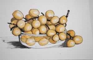 Grapes-1024x665