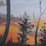 sky, trees, landscape
