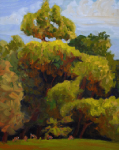 Trees, landscape, monthly plein air painting of field on Dixon Avenue, Woodstock, NY